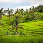 Indonesië is meer dan alleen Bali